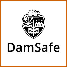 DamSafe icon: OSU beaver crest with text