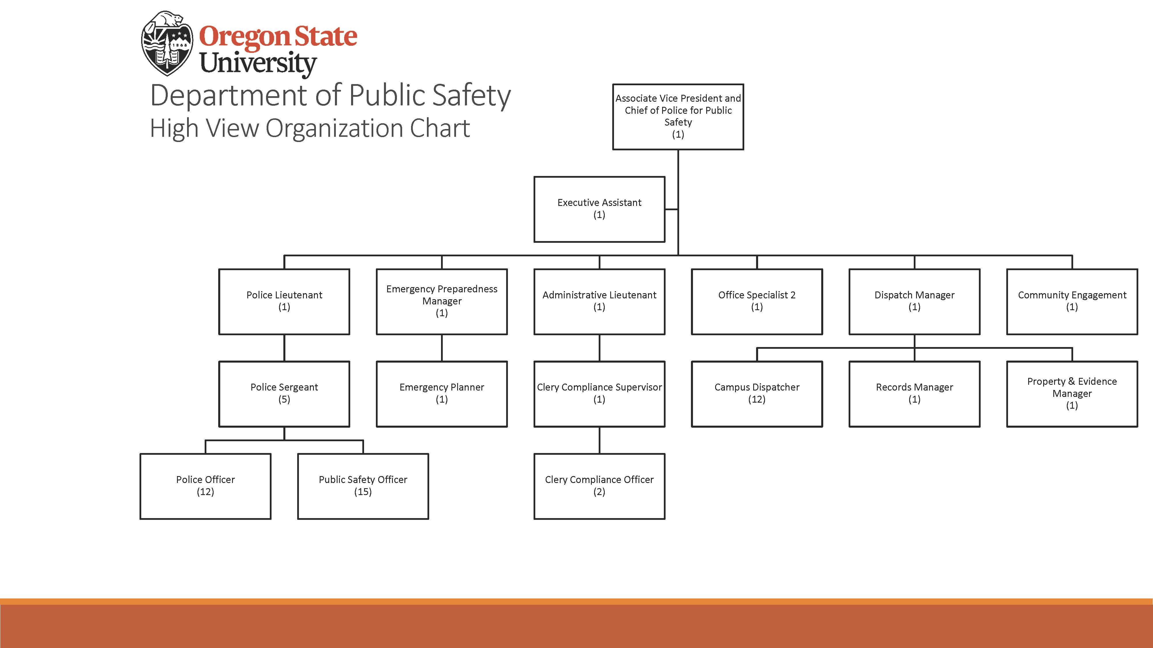 DPS Organizational Chart